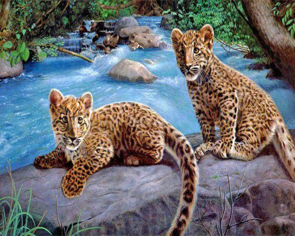 Leopárdkölykök a vízesésnél kreatív számfestő készlet