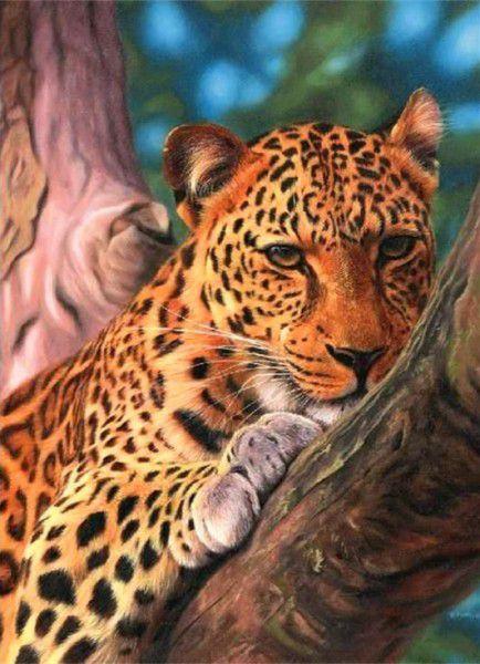 Leopárd a fán kreatív számfestő készlet