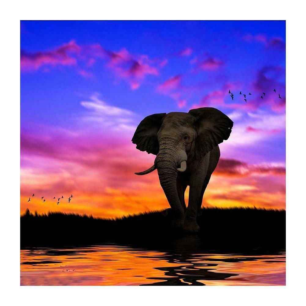 Színes tájkép elefánttal kreatív gyémántkirakó készlet