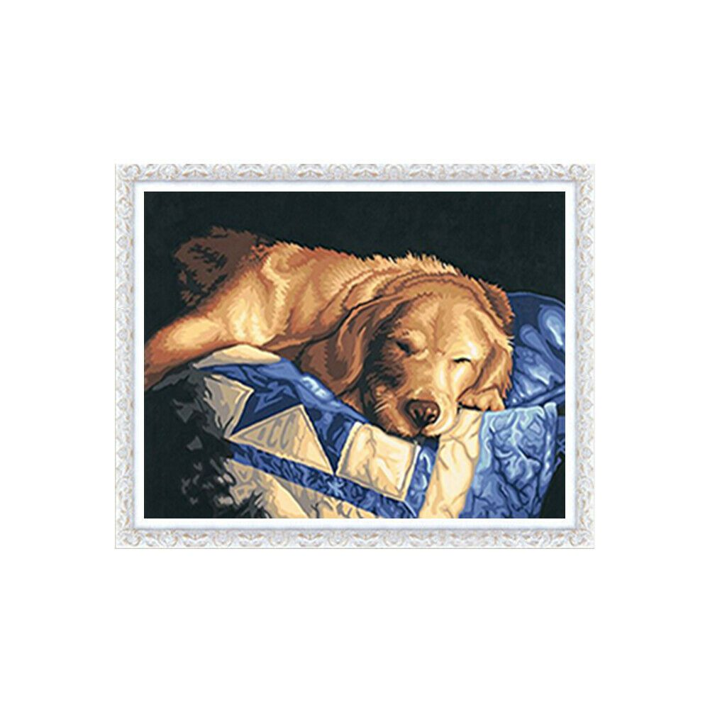 Alvó Golden Retriver kék takarón kreatív gyémántkirakó készlet
