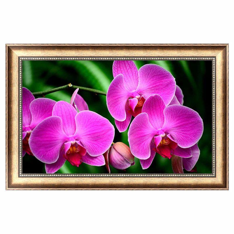 Nagy méretű lila orchidea kreatív gyémántkirakó készlet