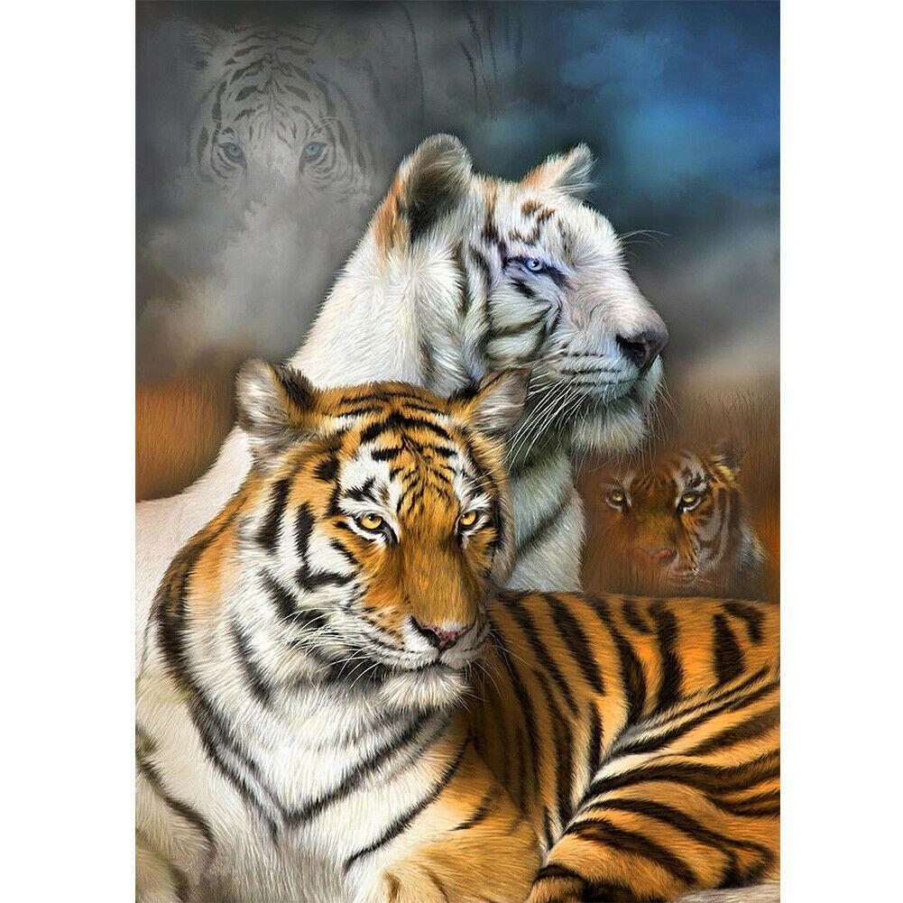 Fehér és barna tigrisek egy képen kreatív gyémántkirakó készlet