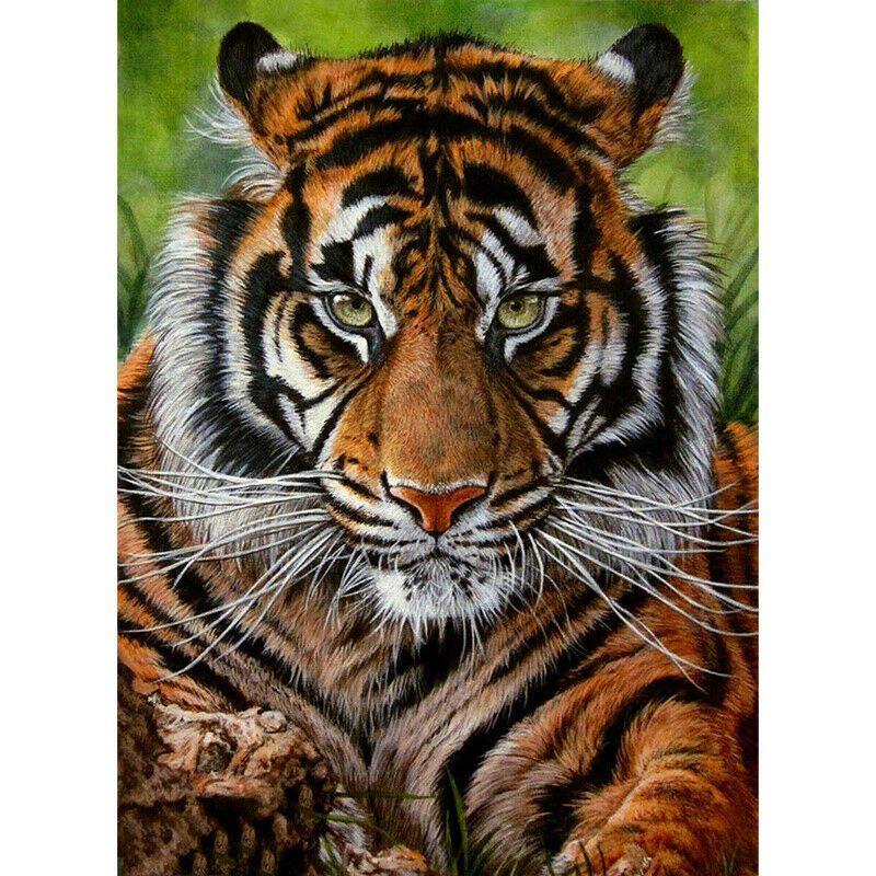 Tigris zöld háttérrel kreatív gyémántkirakó készlet