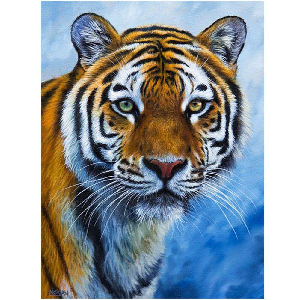Tigris kék háttérrel kreatív gyémánt kirakó készlet