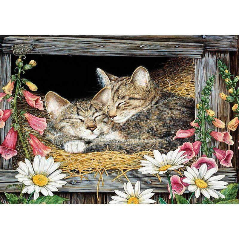 Két macska összebújva kreatív gyémánt kirakó készlet