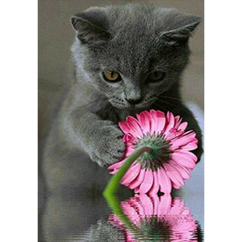 Szürke macska virággal kreatív gyémánt kirakó készlet