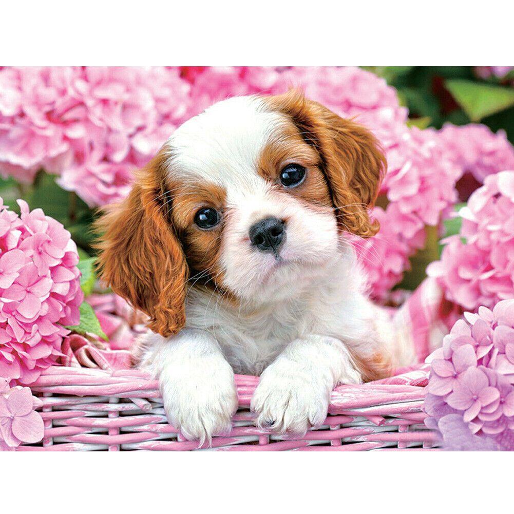 Kiskutya rózsaszín virágokkal a háttérben kreatív gyémánt kirakó készlet