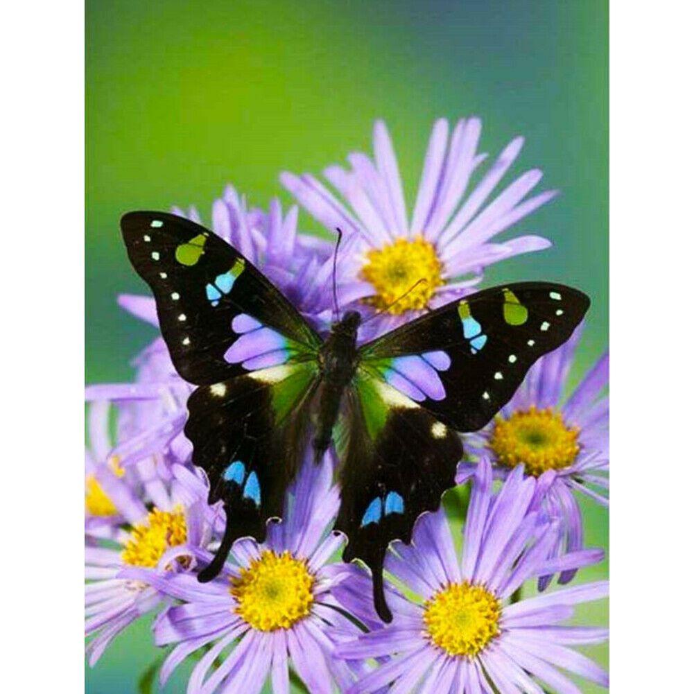 Pillangó lila virágokon kreatív gyémántkirakó készlet